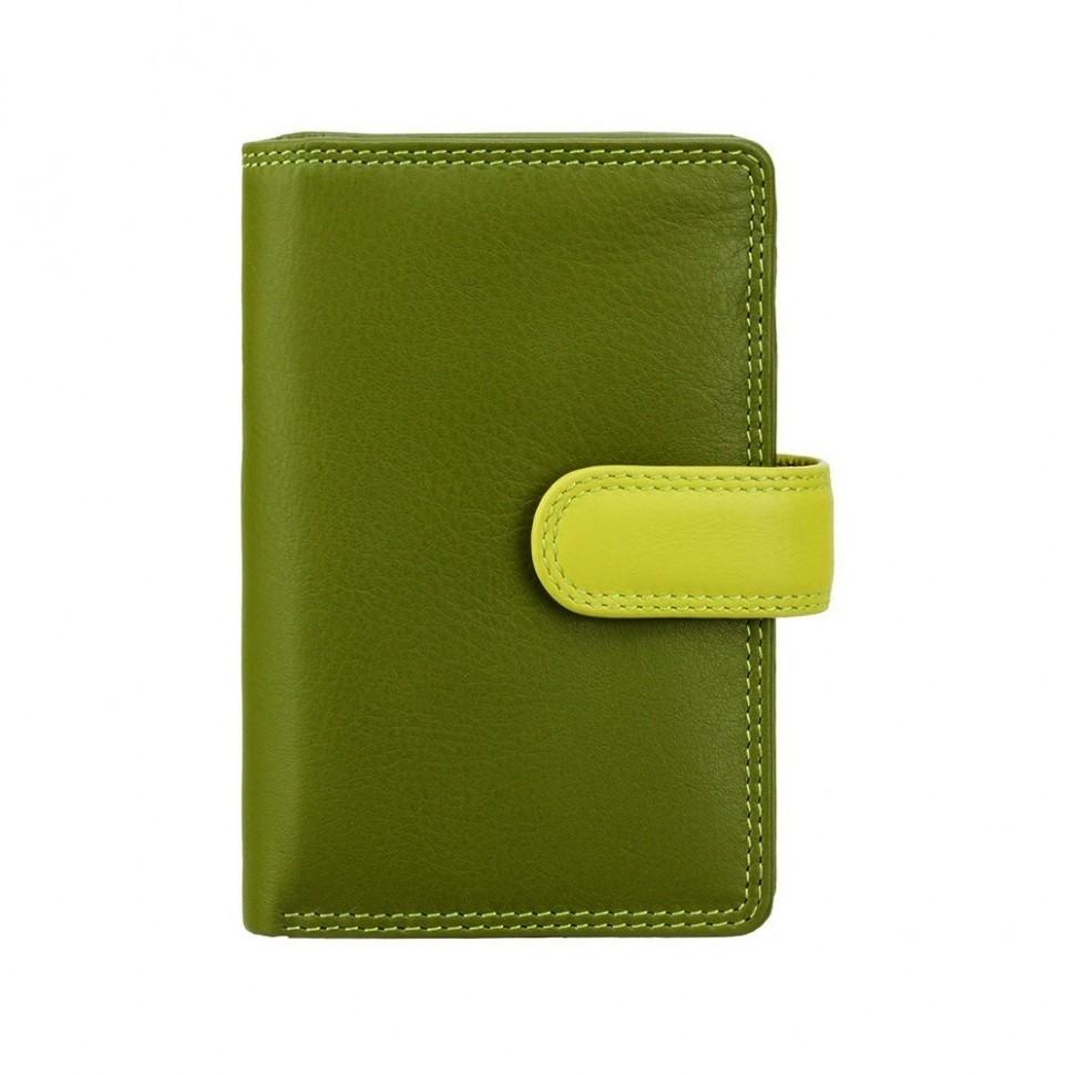 Visconti RAINBOW RB51 FIJI dámská kožená peněženka zelená