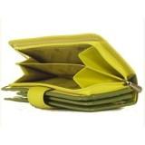 Visconti dámská kožená peněženka RAINBOW RB51 zelená